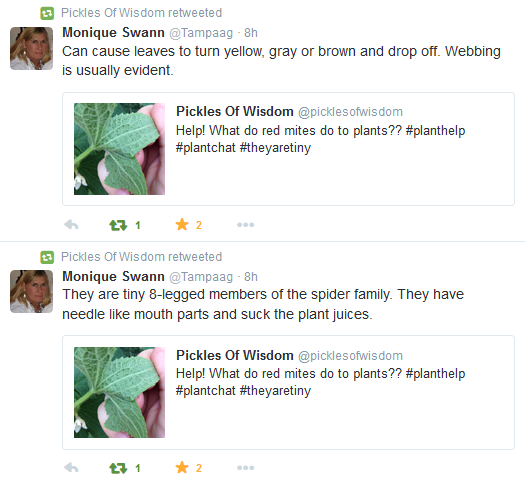 Mite problems? Ask Twitter! | Pickles Of Wisdom