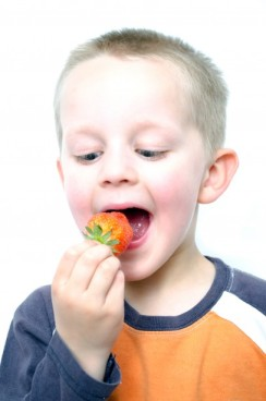 happy-little-boy-eats-strawberries-1368026333AgM