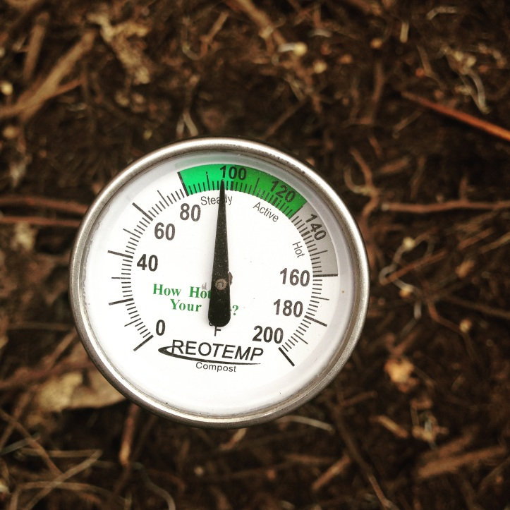 Composting Thermometer Pickles Of Wisdom