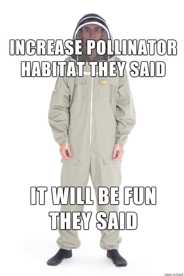 Bee Meme Pickles Of Wisdom
