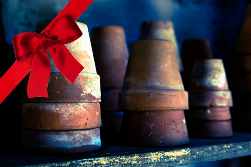 old-flower-pots-holiday